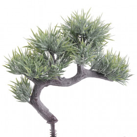 124CAN101MX Bonsai 20cm green