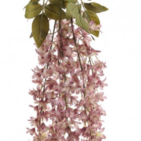 11CAN1506 Wisteria 65cm pink