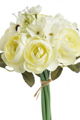 81CAN34_Rananculus cream+AS06+