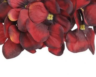 Přišly ještě další barvy hlaviček hortenzií