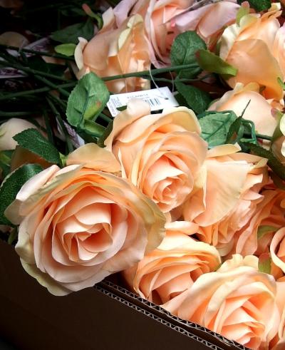 Nové růže na stonku