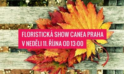 Nenechte si ujít! Pěnové růže opět v prodeji! Floristická show 11. října od 13:00!