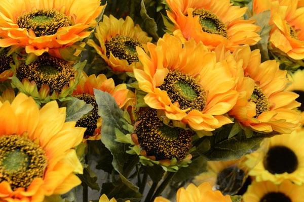 Umělé květiny a rostliny