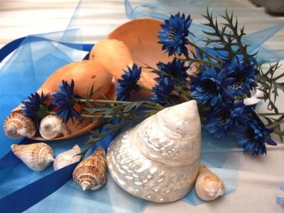 Mořské produkty právě v Canee!
